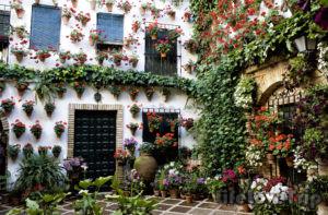 дом с цветами в испанской деревне