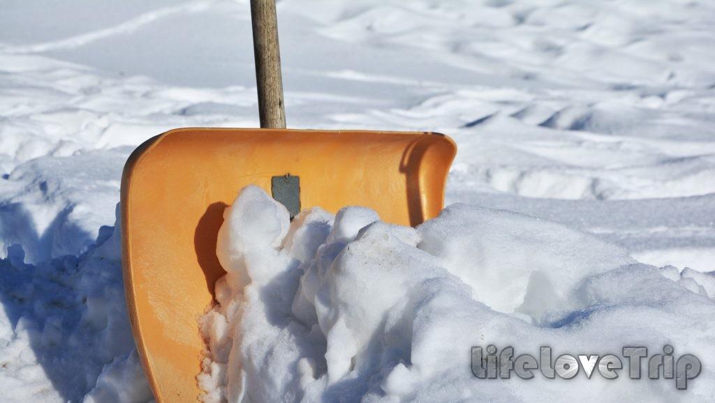 готовим дом и сад к зиме