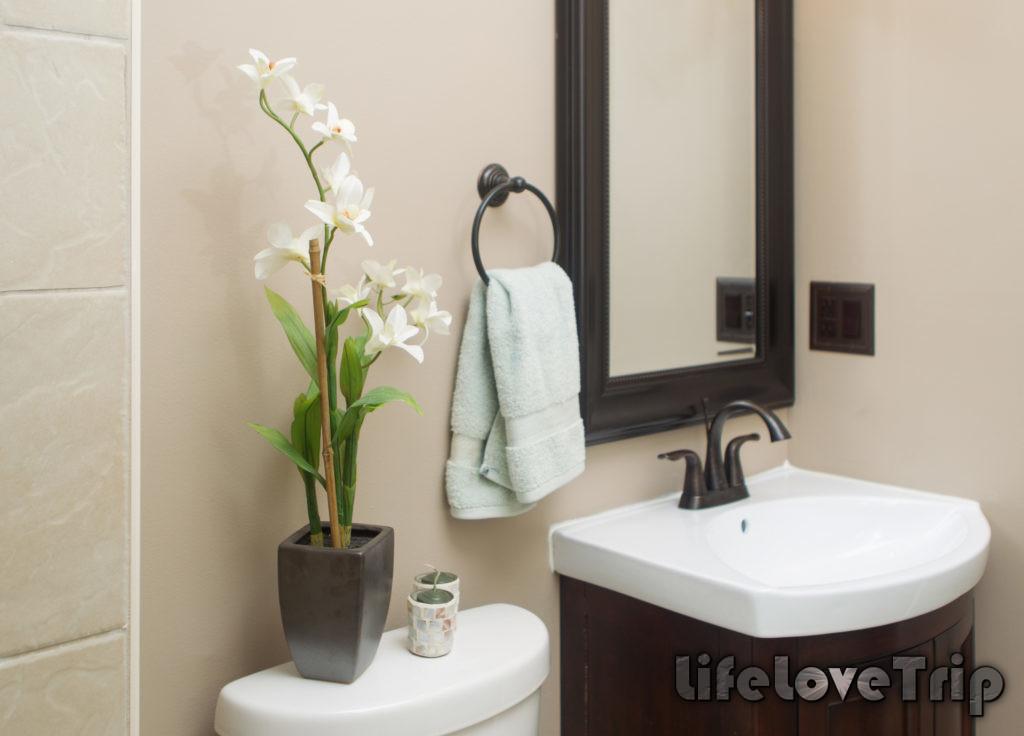 влажность в ванной благоприятна для орхидей